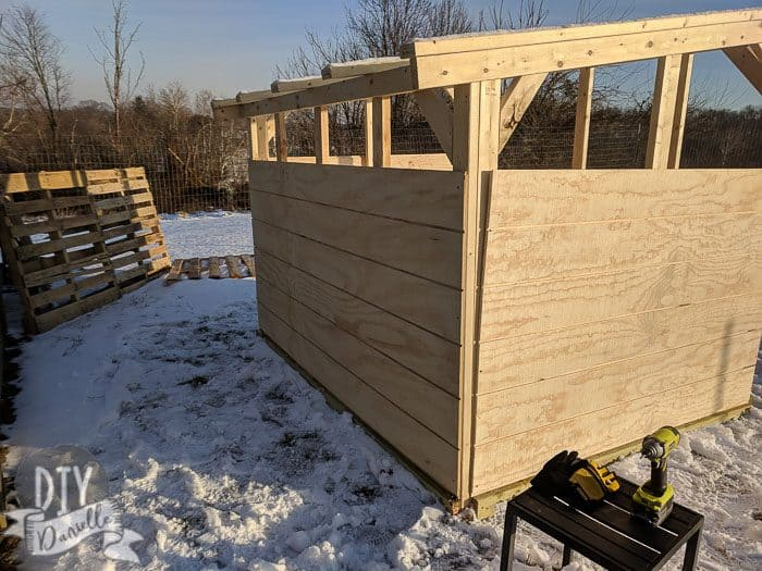 View of the back of the goat shed with the bottom siding panel installed.