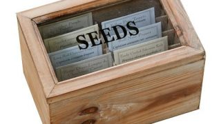 Monticello Seed Packet Box with 10 Heirloom Vegetable Seed Packets