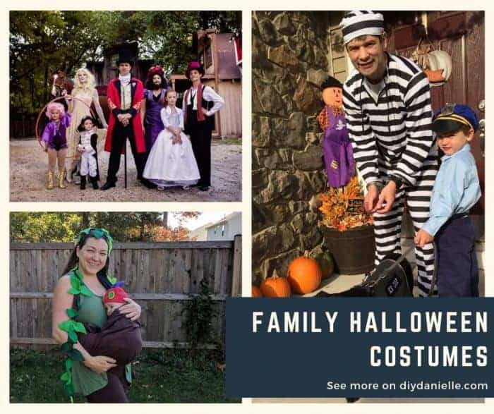 Family Halloween Costume Ideas for 2019.