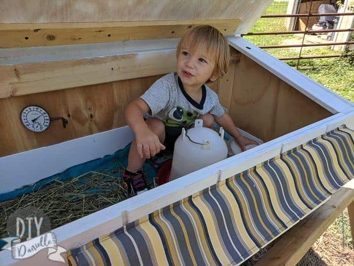 Toddler standing in the guinea pig hutch.