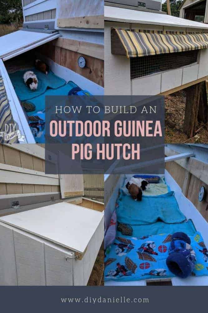 How to build an outdoor guinea pig cage with a predator-proof run below. This is a GAME CHANGER for giving the guinea pigs more space for the milder months!