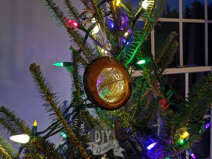 DIY wood slice ornament with pine needles in the resin center.