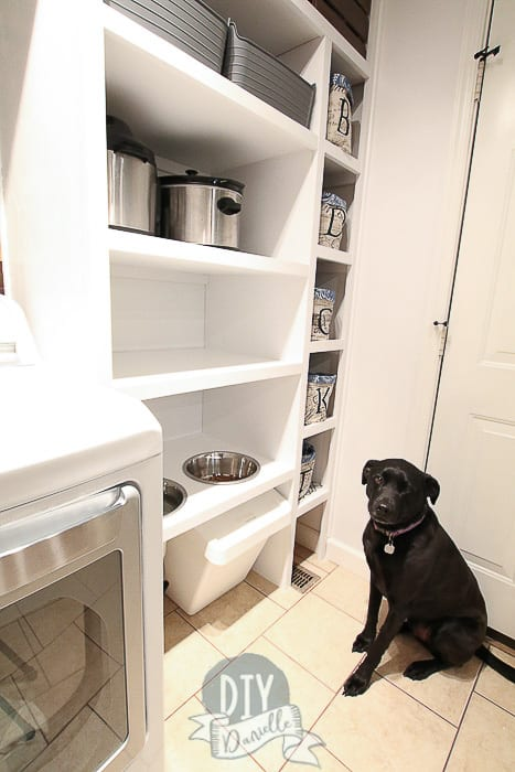 Dog next to his dog feeding station. His food is stored underneath.