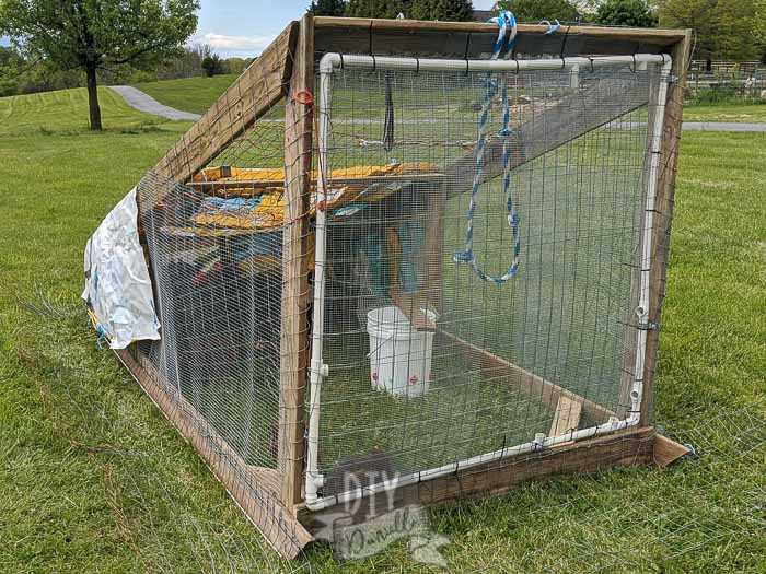 Our chicken tractor for our meat chicks. PVC door to reduce the weight. Feed bags used as tarps for cover from the rain/wind.