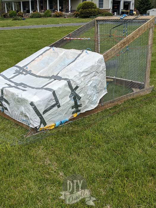 """Tarps"" created with feed bags to cover the chicken tractor."