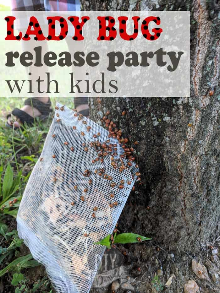Hosting a ladybug release party and making it educational for children. This is a great way to combat aphids in your garden.