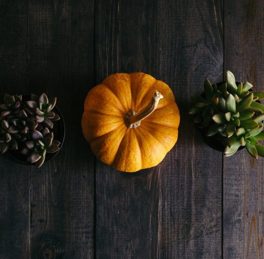 fall blog posts