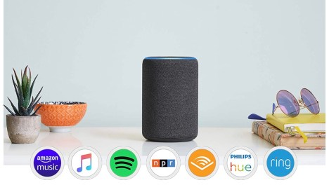 Great Gifts: Echo