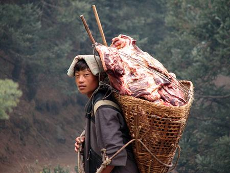 How to be a sherpa (2/2)