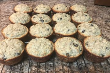 low carb banana coconut protein muffins