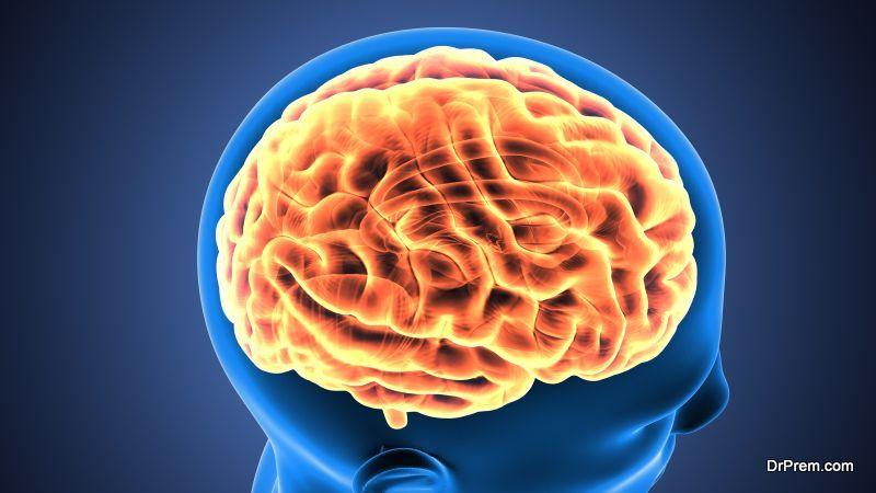 Injured prefrontal cortex