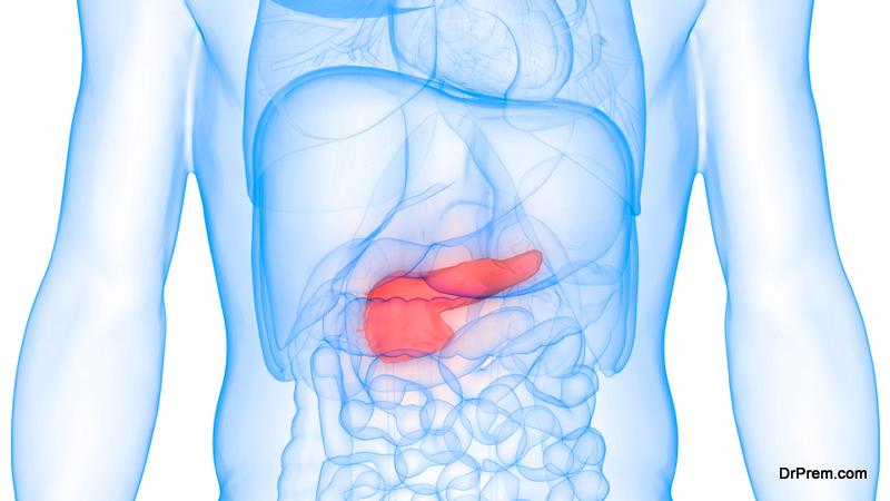 pancreas secrete a hormone called insulin