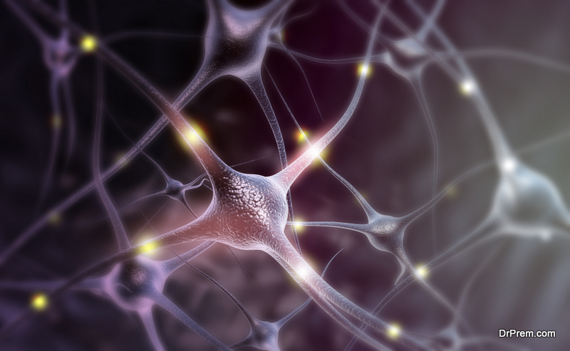Natural-Ways-to-Increase-Grey-Matter-in-Your-Brain.