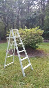 ladder upcycled