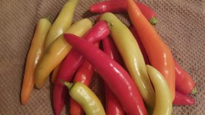How to can banana peppers vegetables