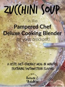 Pampered Chef Pin