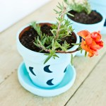 DIY Painted Plant Pots