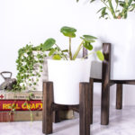 Make a Tabletop Plant Stand