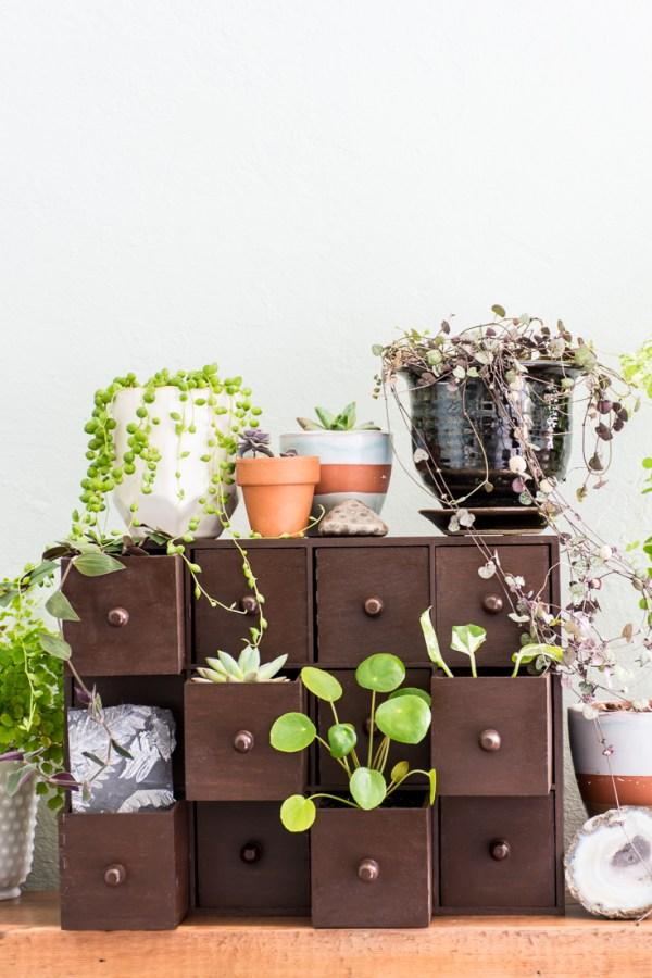 My DIY Plant Drawers