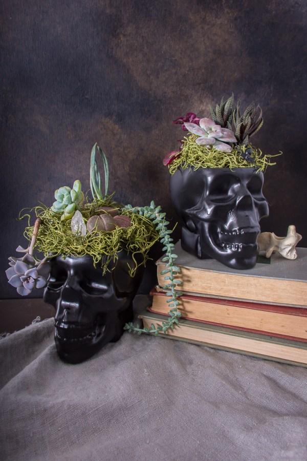 Halloween Skull Planters