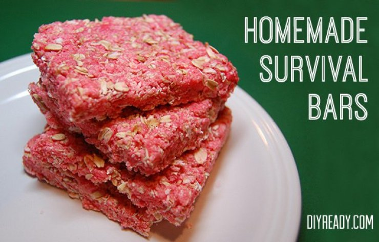Homemade Survival Bars | DIY Survival Food You'll Actually Want To Eat | survival food | survival food bars