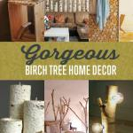 Birch Tree Home Decors Diy Projects Craft Ideas How To S For Home Decor With Videos