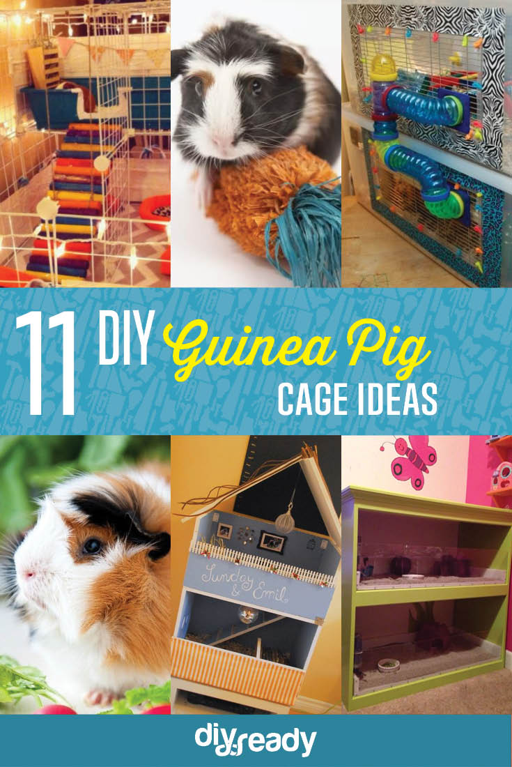 11 DIY Guinea Pig Cage Ideas DIY Projects