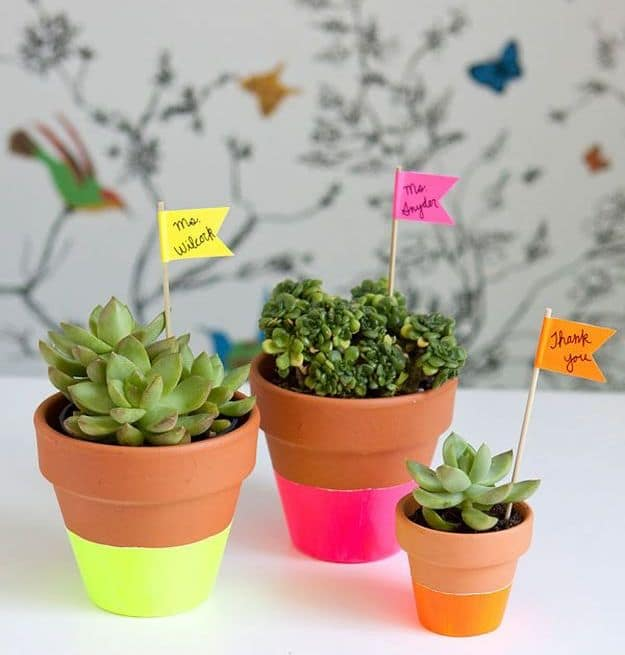 Bright Succulent Pots | DIY Teacher Gifts To Ring In The New School Year