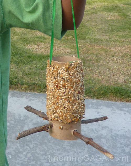 DIY Tuvalet Kağıdı Rulo Kuş Besleyici