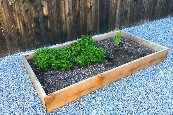 Outdoor Gardening Hacks