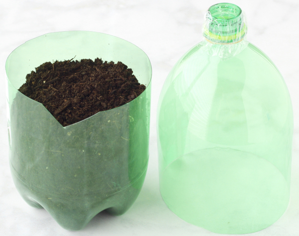 2 Liter Bottle Greenhouse