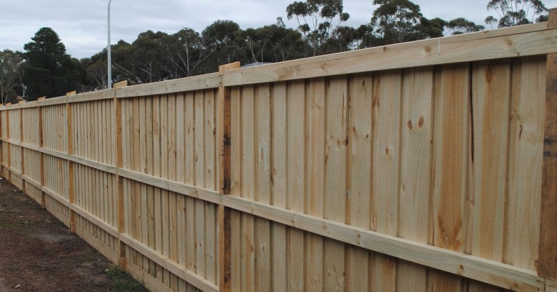 Treated Pine Fence