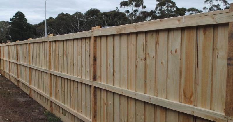 Treated Pine Fence