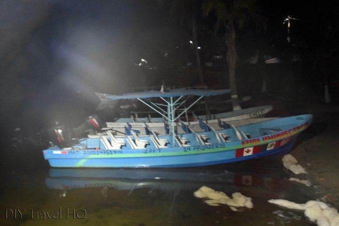 Phosphorescent Plankton Tour on Laguna Manialtepec