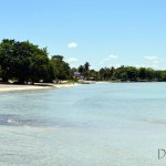 Playa Larga and Bay of Pigs