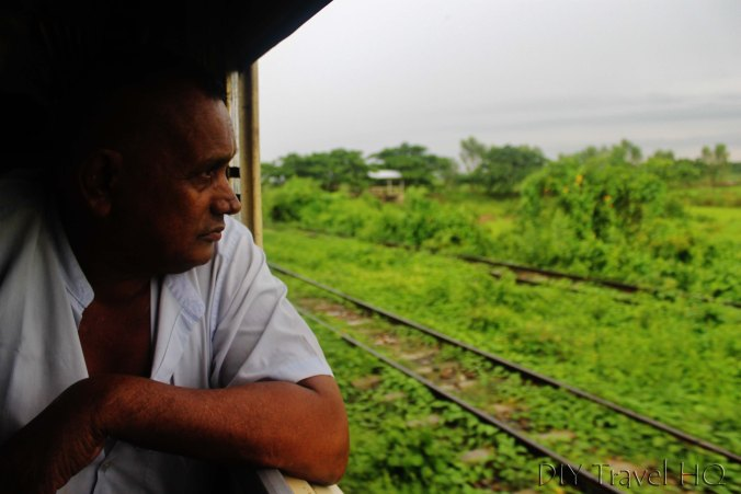 Green countryside views on train
