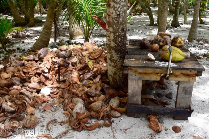 Coconut station on Glovers Atoll