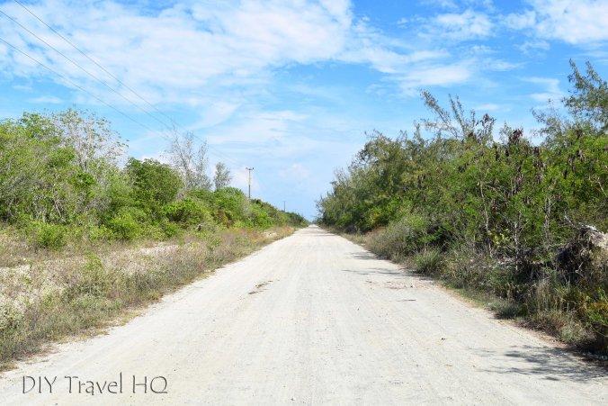 Road to Playa los Cocos