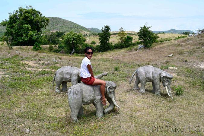 Riding a pygmy elephant!