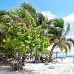Caye Caulker Travel Guide: Budget Island Paradise!