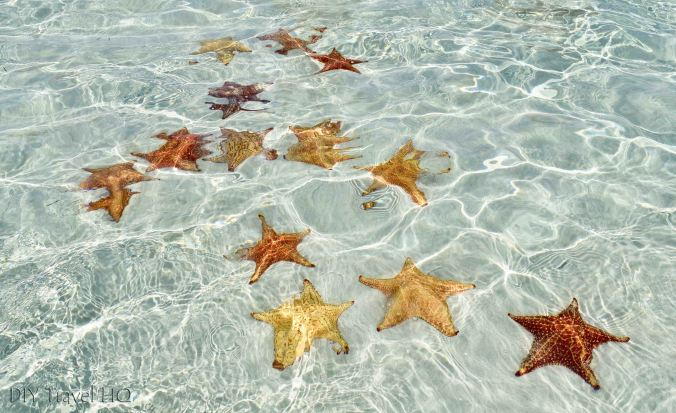 San Blas Natural Pool & Starfish