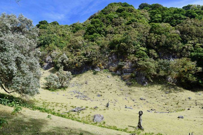 Volcan Baru National Park Pasture