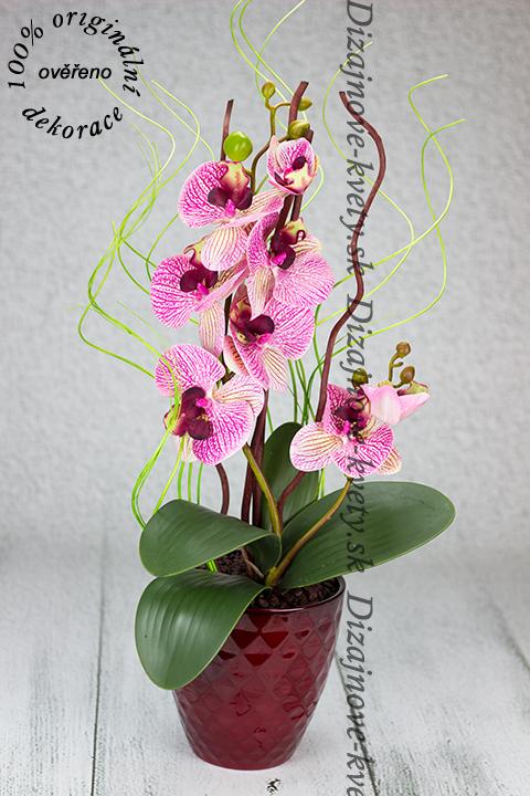 Moderná dekorácie s kvetmi orchideí v červenej nádobe