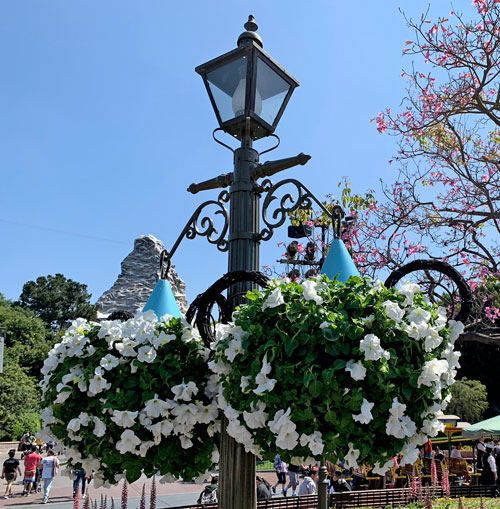 Light fixture with two flower baskets in castle hub or central plaza Disneyland