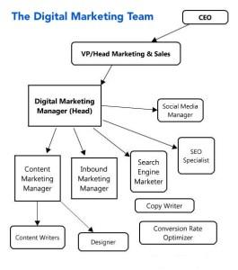 Digital Marketing team hierarchy