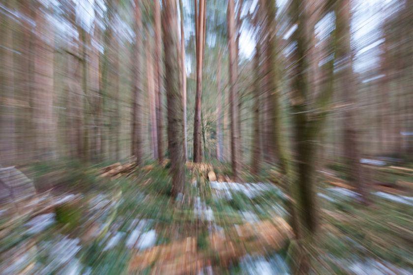 37622346 - vertigo zoom blurred winter woods.