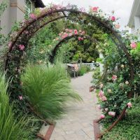 35+ Top Guide of Metal Garden Arbor Trellis with Gate Scroll Design Arch Climbing Plants