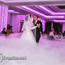 gheata in pahare nunta timisoara lugoj
