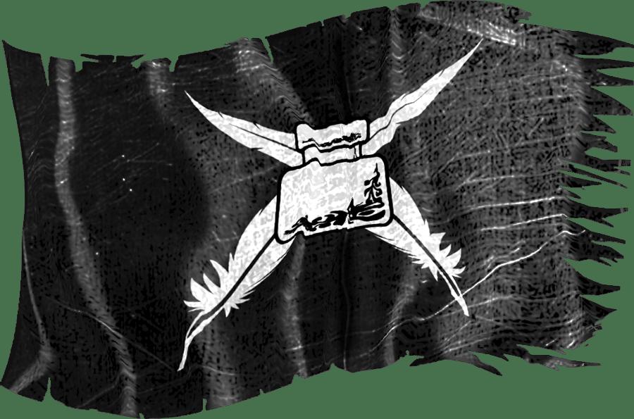 writer's life pirate flag