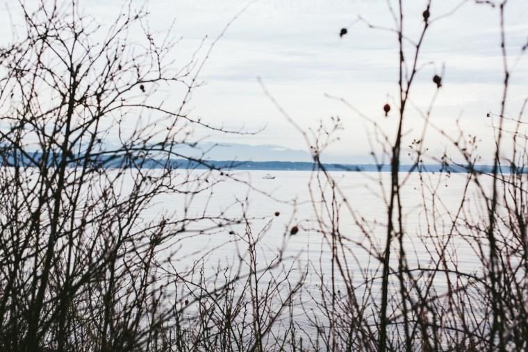 Seattle_Blog-106